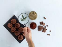 CBD cookies, cannabis chocolate, cocoa and hemp seed on bright background. Hand holding magnifying glass over marijuana leaf. Medicinal marijuana in food.