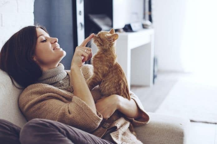 Best Advice for First-Time Cat Owners