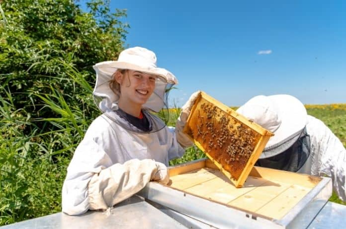 3 Reasons To Support Your Local Beekeepers