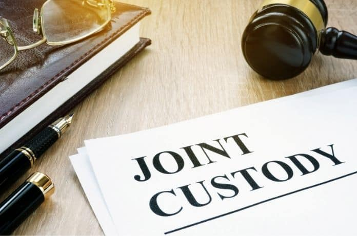 What You Should Know About Joint Custody