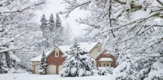 Winter Weather Problems To Look Out for in Your Home