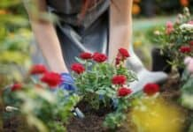 3 Refreshing Ways To Welcome Spring