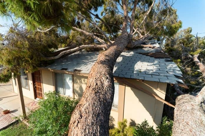How To Handle a Storm Damage Insurance Claim