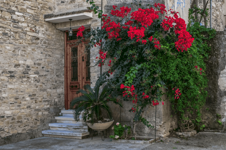 Property For Sales In Paphos: 6 Things I Wish I Knew Earlier