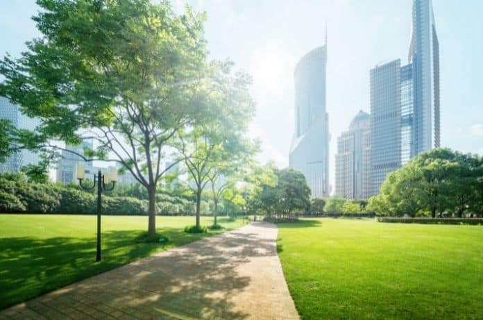 How Cities Can Become More Sustainable